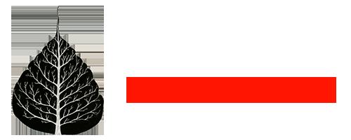 Jill Satterfield Logo